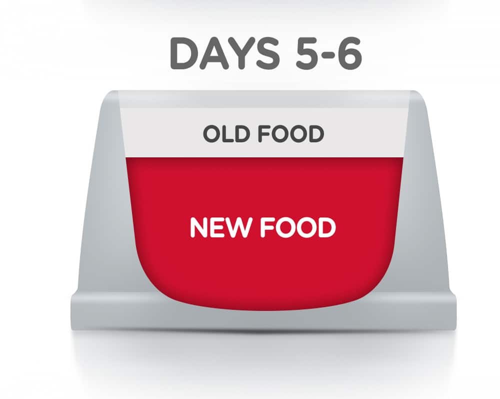 Graphic showing pet food bowl with red diagram for new food and white for old food.